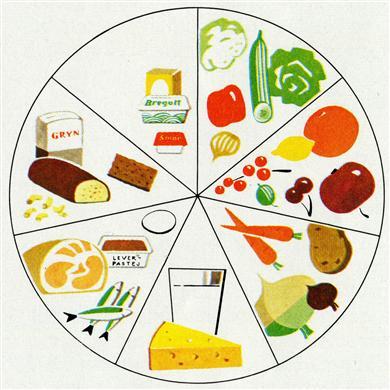 Bildresultat för kostcirkeln