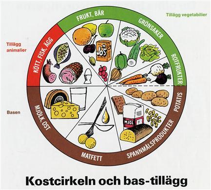 vad är kostcirkeln